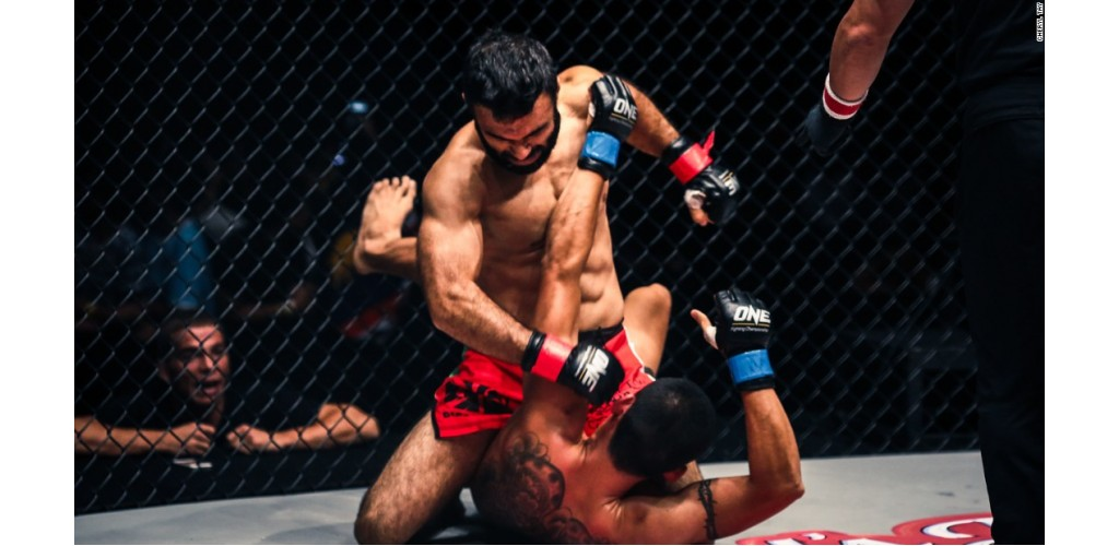 MMA Protector